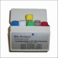 my-Budget M-MuLV RT <br>DNA-Polymerase <br>50.000 U